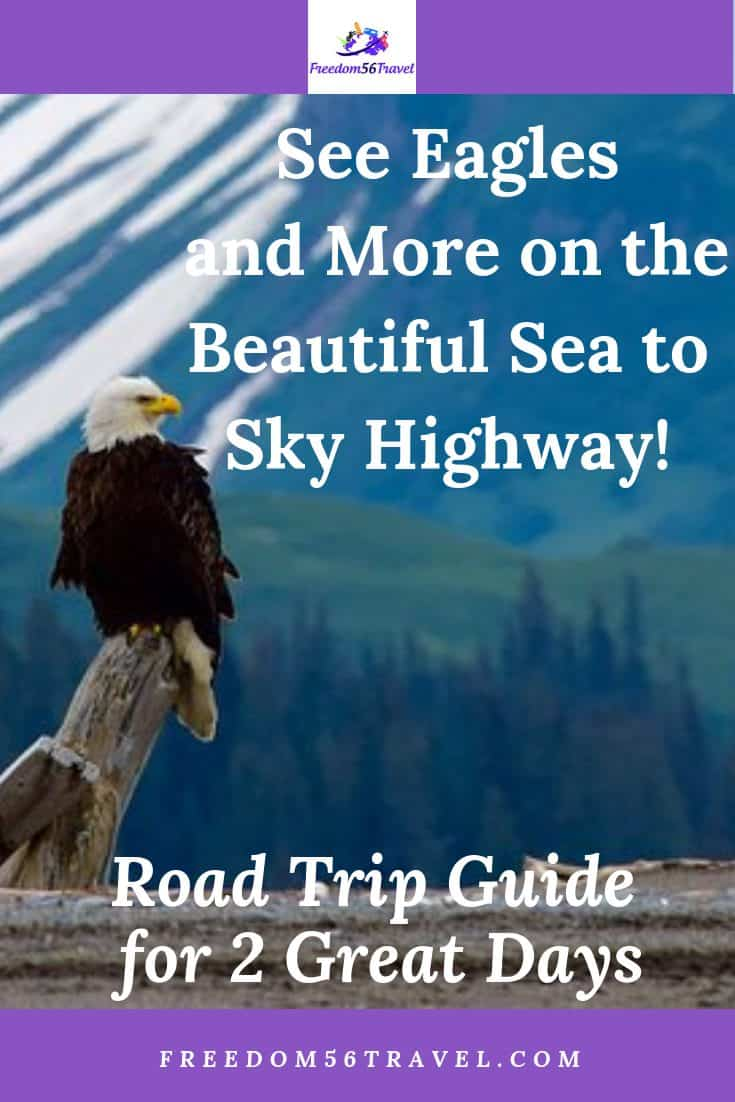 Pinterest image of Eagle on the road to Whistler
